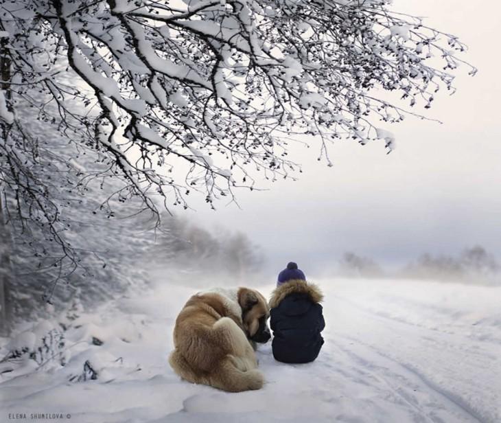 nieve, niño y perro
