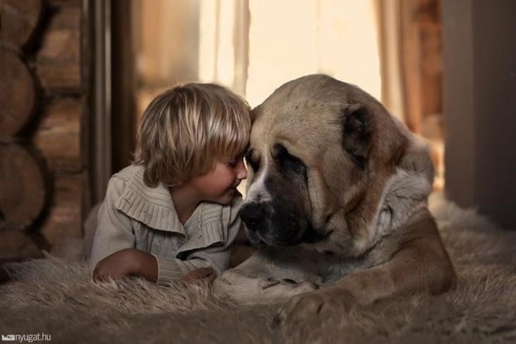 niño con perro cabeza con cabeza