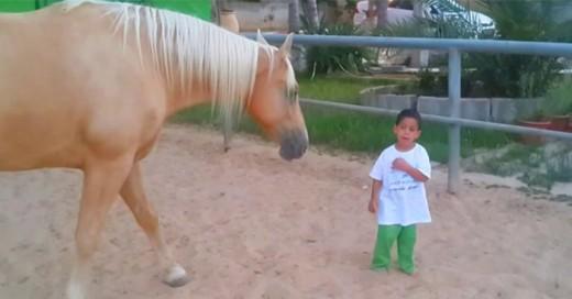 que pasa cuando un niño con sindrome de williams convive con un caballo