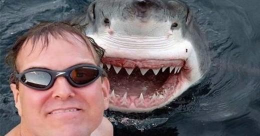 las mejores selfies con animales