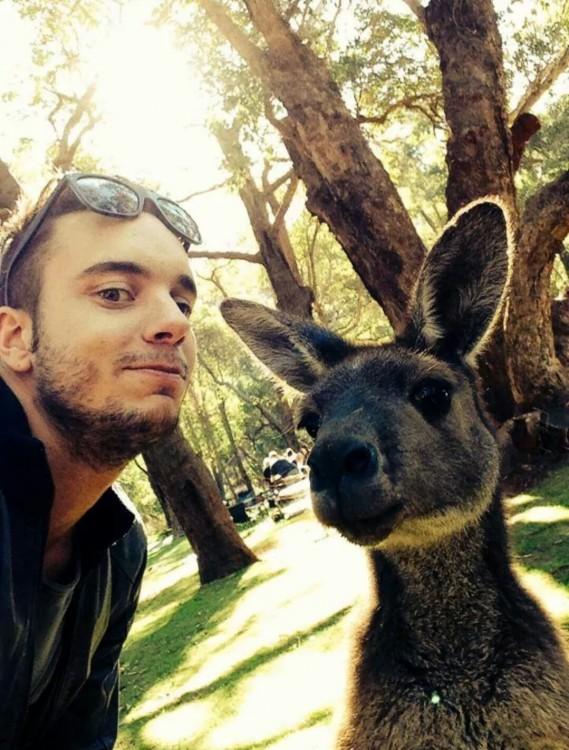 selfie con un gracioso animal
