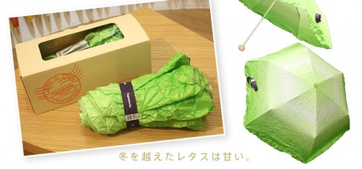 paraguas de lechuga
