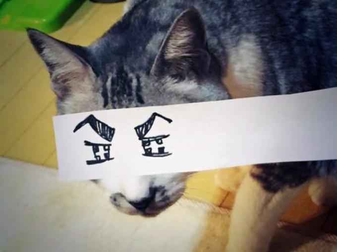 gato atigrado con ojos malvados dibujados
