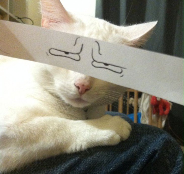 gato blanco con ojos dibujados de tristesa