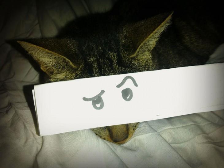 gato atigrado con ojos de interes dibujado