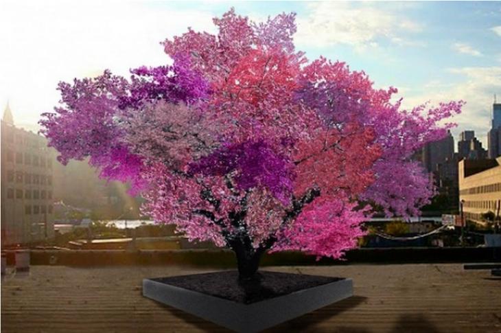 árbol en color rosa que da 40 tipos de fruta diferente