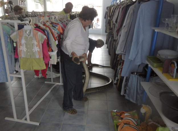 personas en una tienda de ropa sosteniendo un pitón