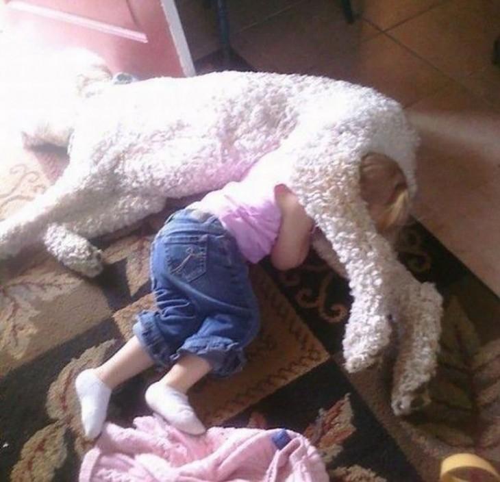 Perro gigante acostado arriba de su pequeña dueña