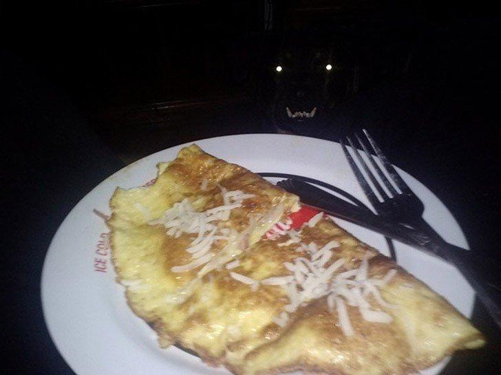 Reflejo de los ojos y los dientes de un perro en la oscuridad