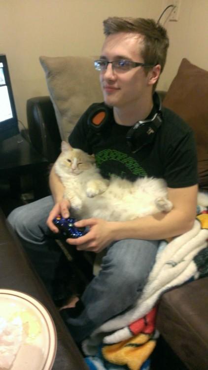 Gato en el regazo de su amo mientras juega vídeo juegos
