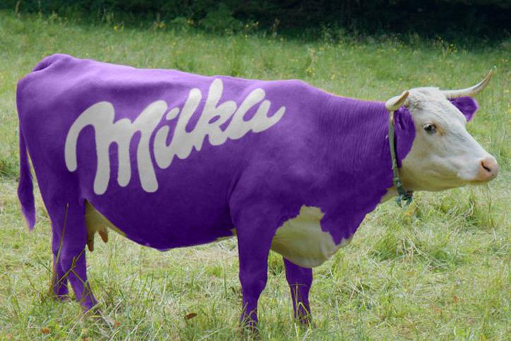 Cuerpo de una vaca pintado de morado en medio de un campo