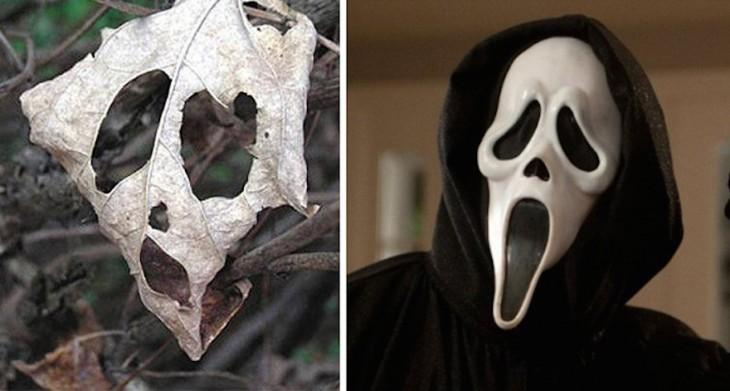 Hoja seca junto a una máscara de Scream