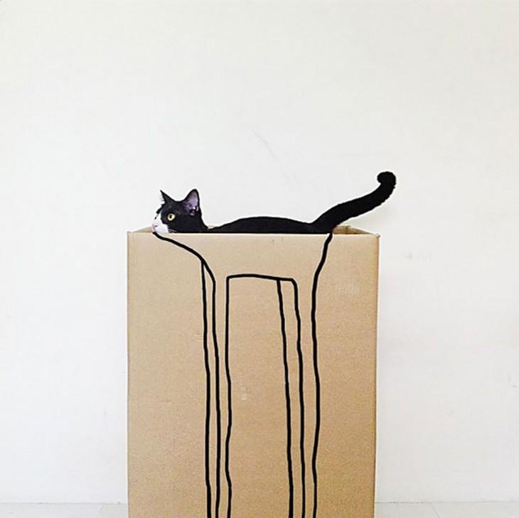 Gato escondido en una bolsa
