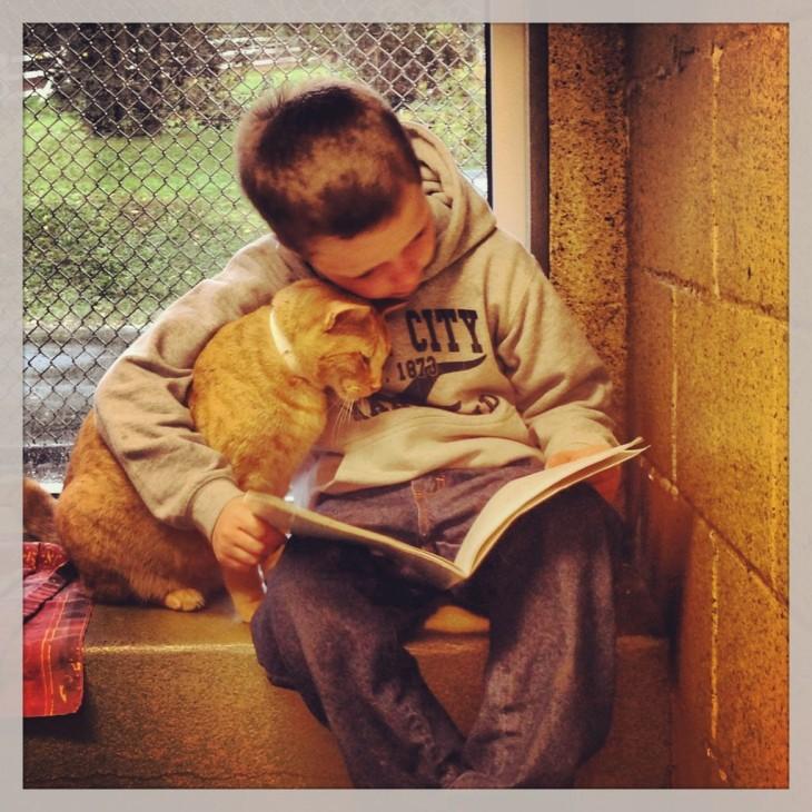 Gato bajo el brazo de un niño viendo hacia abajo a un libro