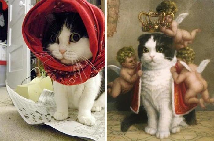 Gato que parece salido de un cuadro