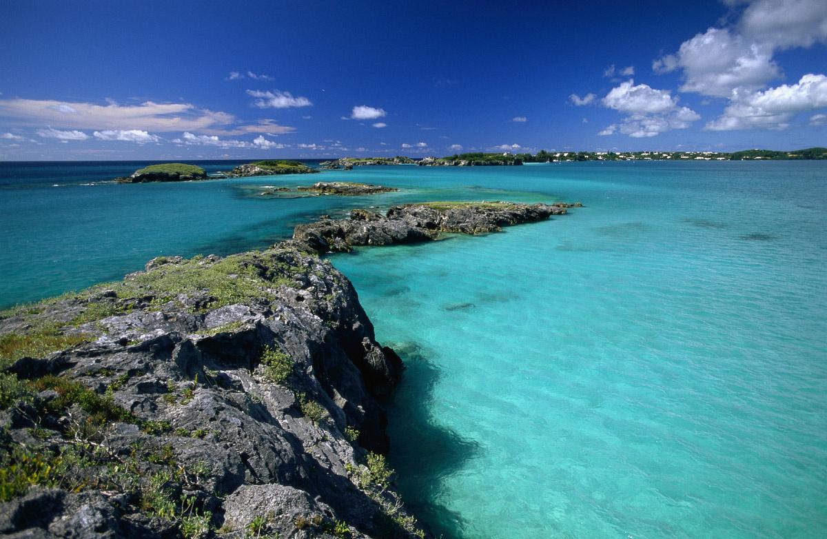 Rojo Bermudas - Compra lotes baratos de Rojo Bermudas de