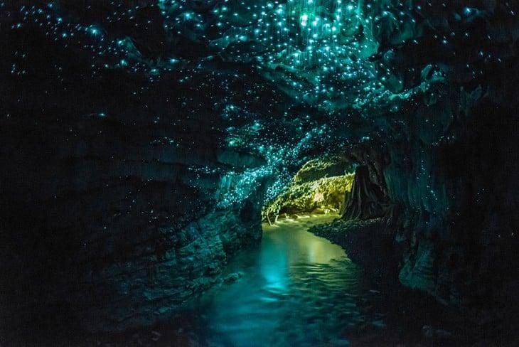 Cuevas de los gusanos luminosos ubicada en Nueva Zelanda