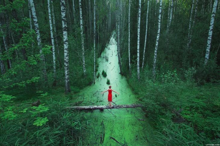 Mujer parada sobre un tronco de un árbol que cruza un pequeño río entre un bosque con altos árboles