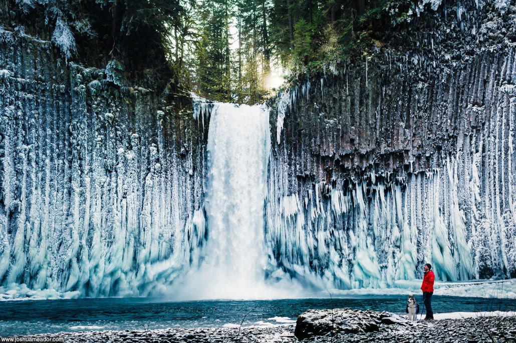 Hombre con un perro a su lado bajo a unas cascadas ubicadas en Estados Unidos