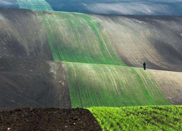 Un hombre sobre los campos de Polonia caminando hacia la cima