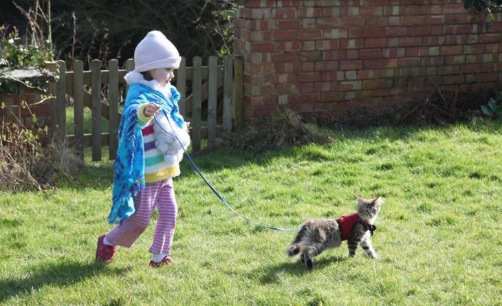 Niña jalando su gato con una correa por el pasto