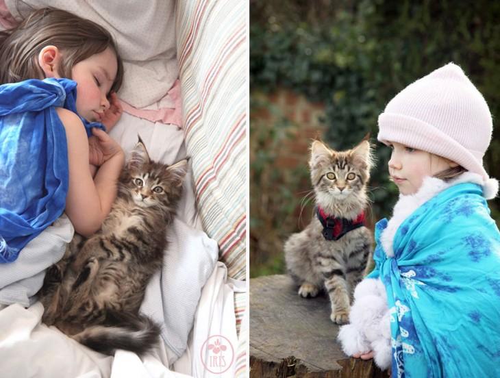 Separación de una imagen en dos partes con una niña y su gato