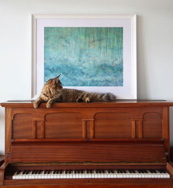 Gato sobre un piano