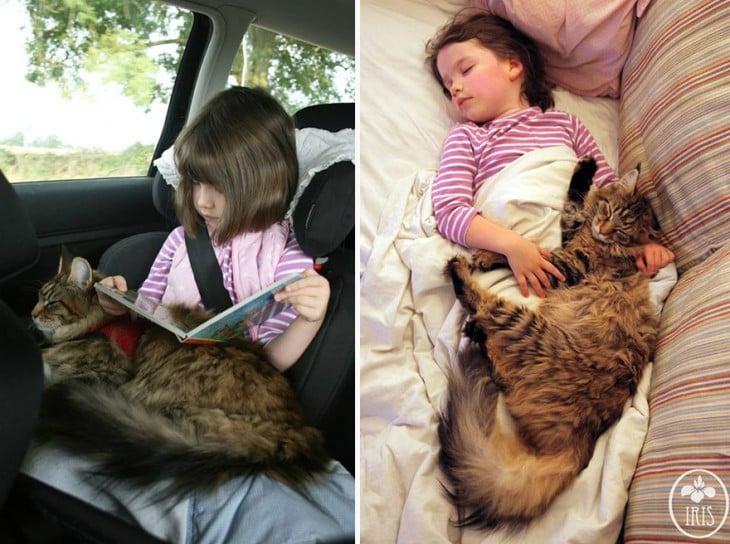 Imagen dividida en dos partes con una niña y su gato leyendo un libro en un coche y la otra la niña y su gato durmiendo