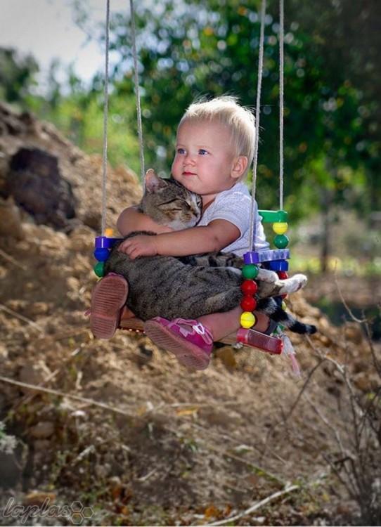 Niño sobre un columpio y con un gato en sus brazos