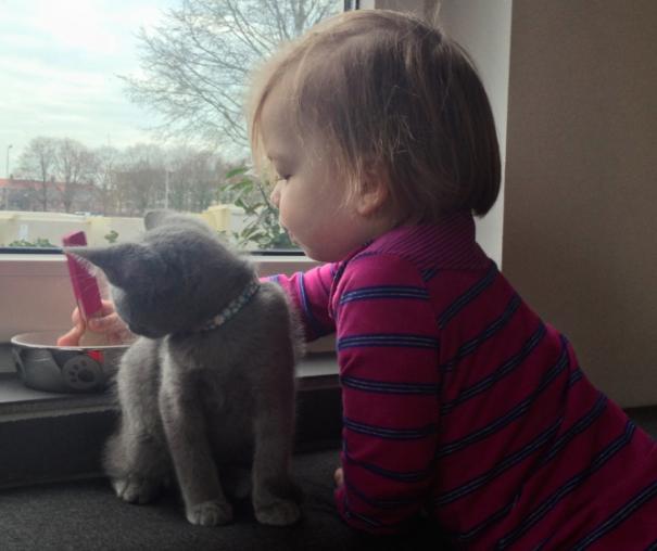 Niña jugando con su gato frente a una ventana