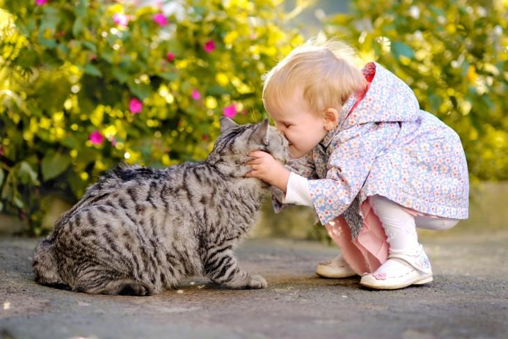Niña dando un beso a un gatito en un patio