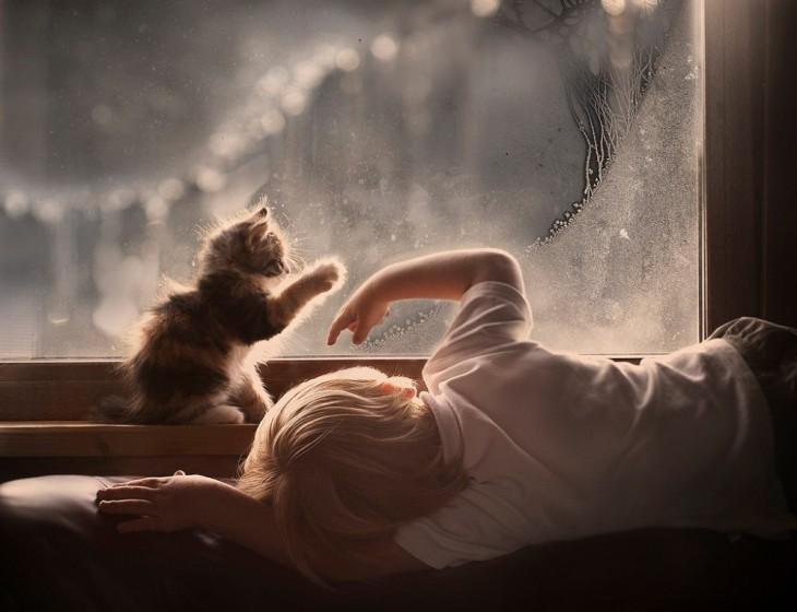 Un niño y su gato frente a una ventana