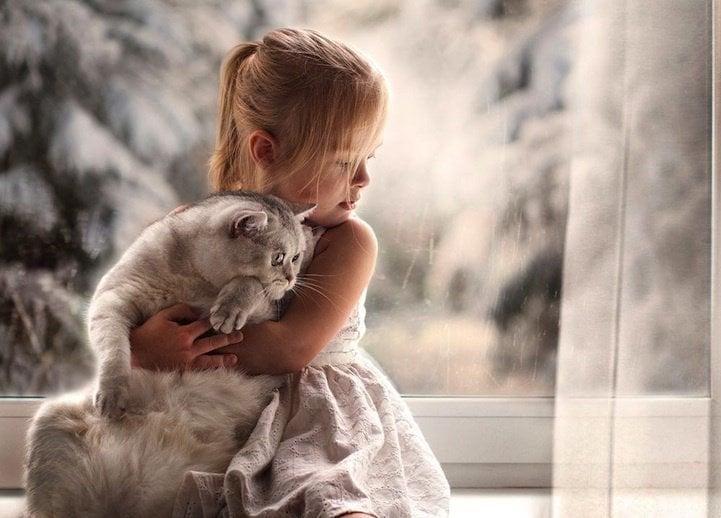 niña abrazando a su gato frente a una ventana
