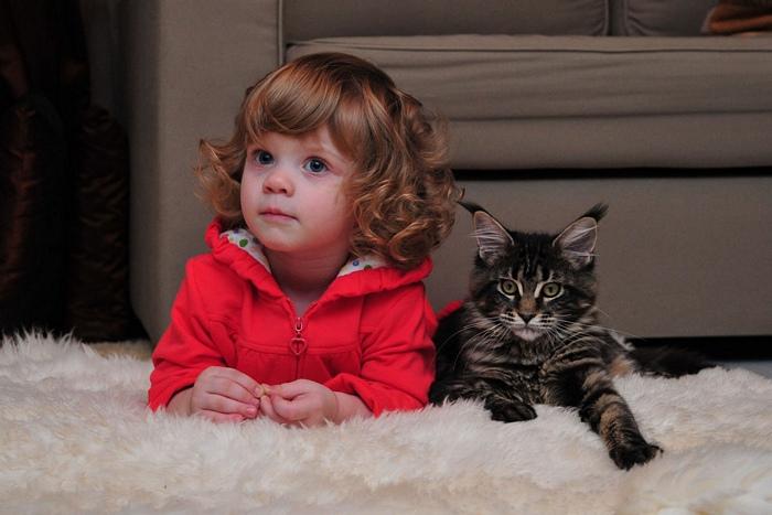 Niña junto a su gato recargados sobre una cama