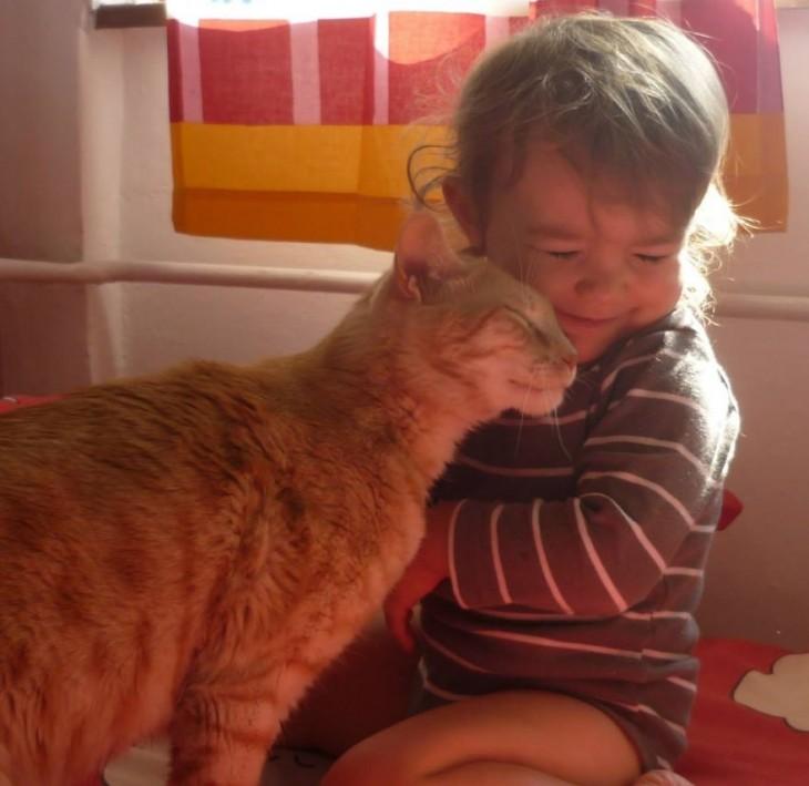 Gato poniendo su cabeza en la cara de una niña