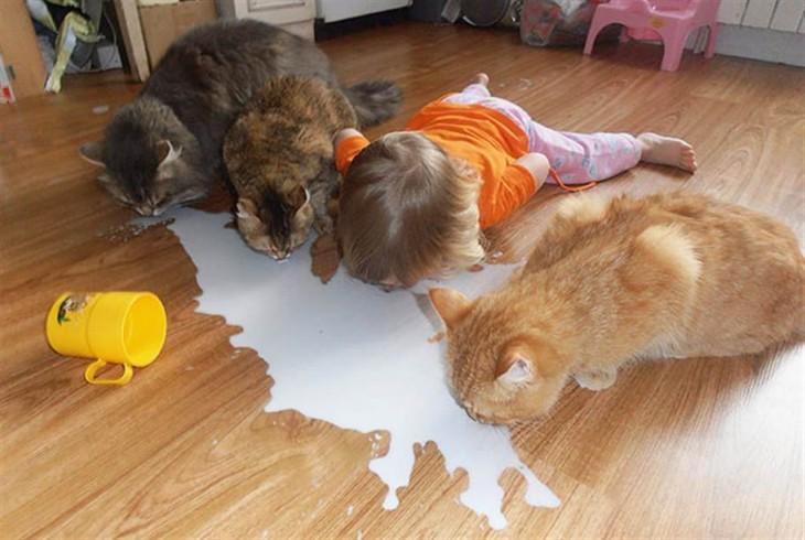 Niña junto a tres gatos lamiendo el piso