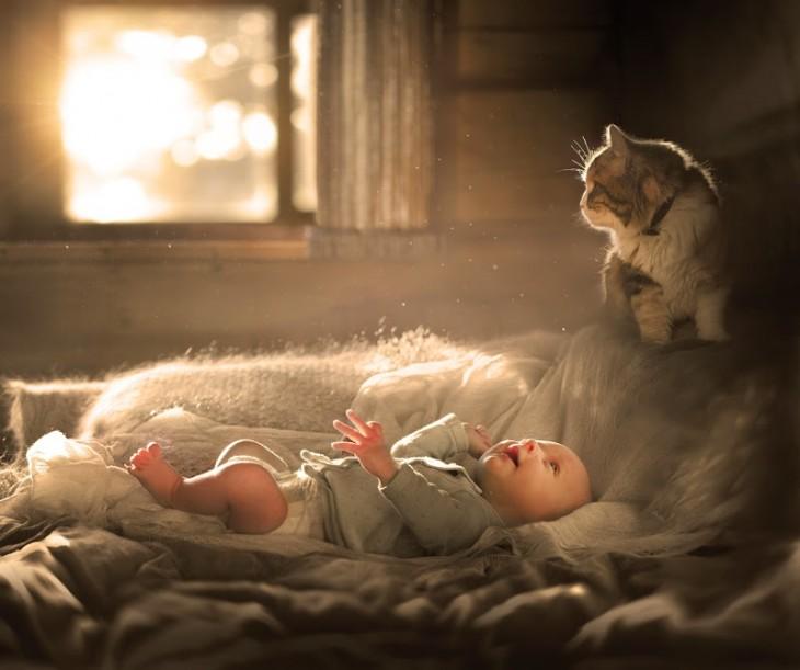 niño acostado y viendo a su gato hacia arriba