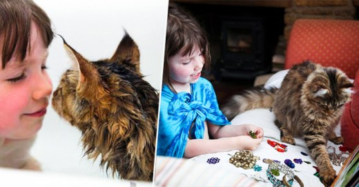 Un gatito que ayuda a una niña
