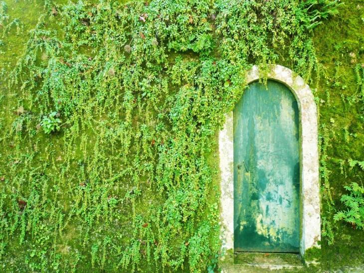 Puerta en color verde con forma de arco, entre paredes verdes que parecen ser pasto