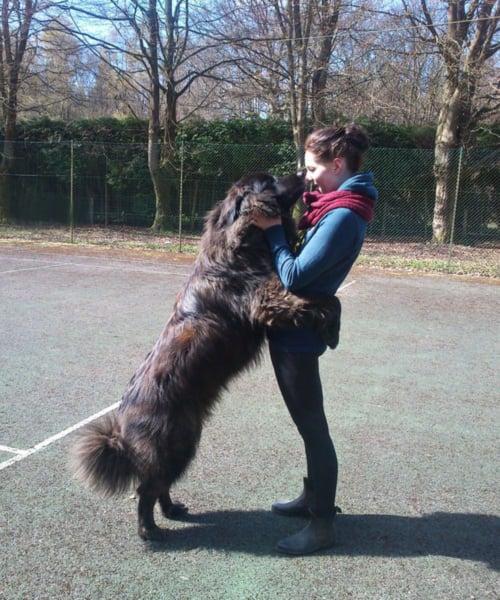 Chica con un perro abrazándola