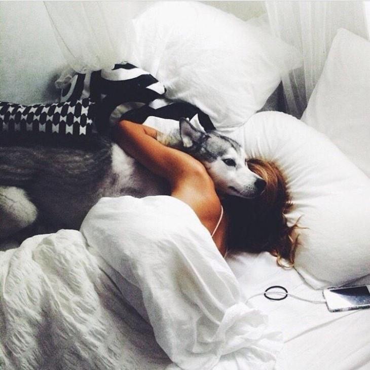 Perro husky acurrucado con su dueña en la cama