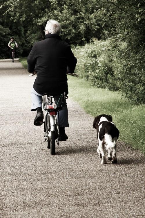 Hombre mayor en bicicleta con su perro de lado