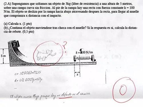 Dibujo de un elefante en un examen de matemáticas