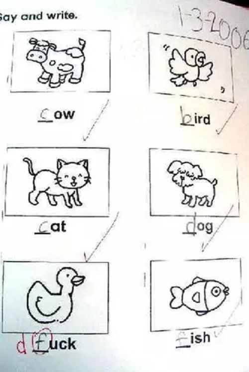 Respuesta a un examen de dibujos en ingles