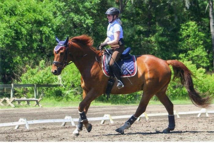 Mujer sobre un caballo practicando equitación