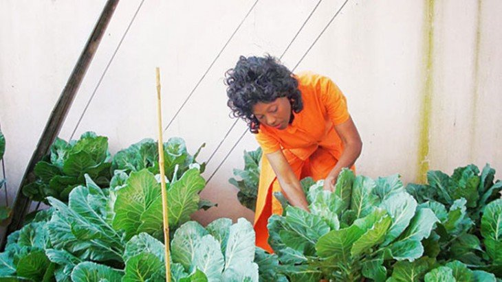 Mujer checando la cosecha en su jardín