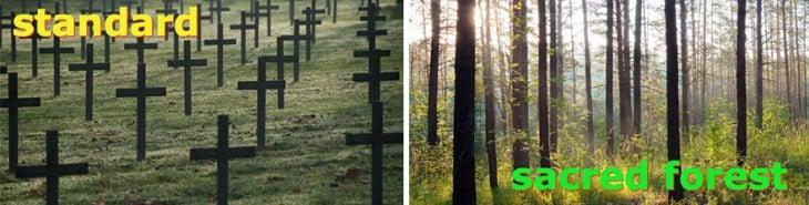 Cementerio convertido en bosques de recuerdo