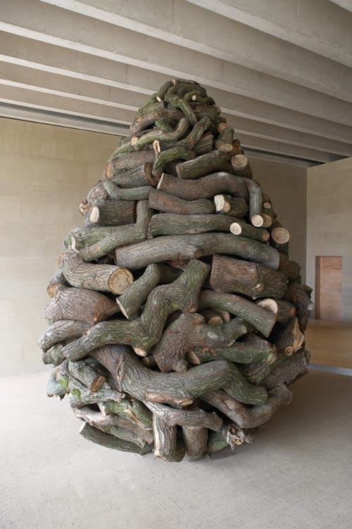 Pedazos de troncos juntos formando como un huevo