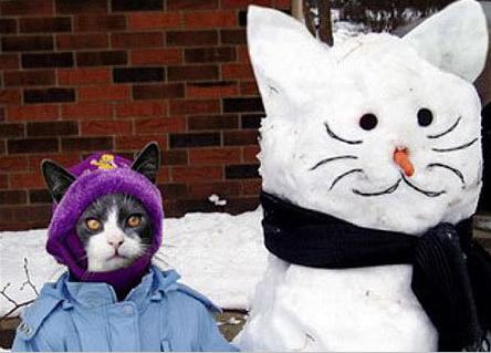 gato, junto a muñeco de nieve