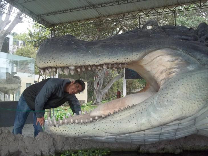 cocodrilo gigante con un hombre adentro de su cabeza